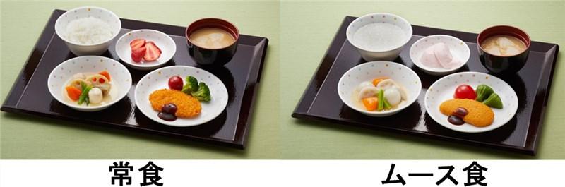 日清医療食品のムース食