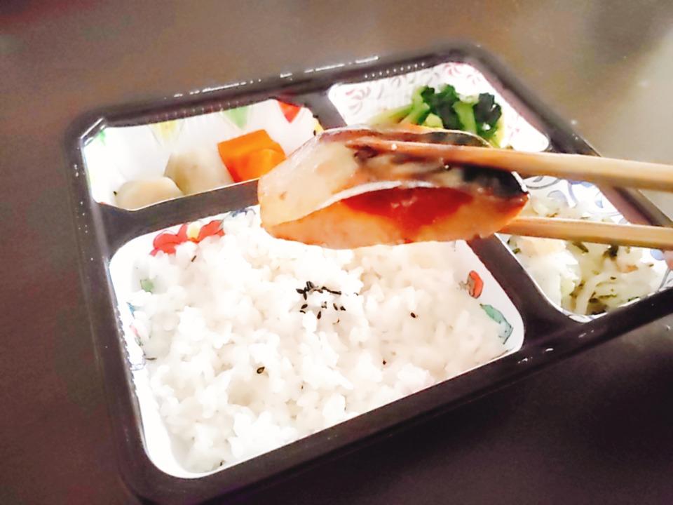 サバの冷凍弁当アップ画像