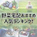 野菜宅配のおすすめ人気ランキング
