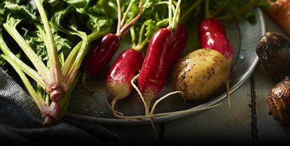 季節に応じた旬の野菜