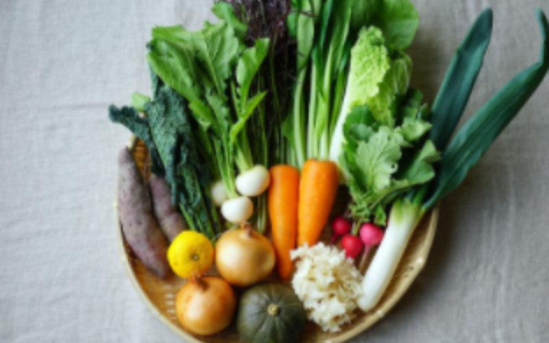 坂ノ途中の野菜セット